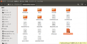 websockify-master_014